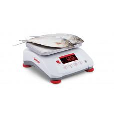 Настольные весы Valor 4000 V41PWE1501T